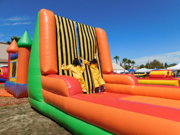 Photo of Participants on Velcro Wall