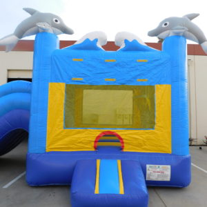 Jumper of Dolphin Combo Jumper and Slide