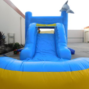 Slide on the Dolphin Combo Inflatable