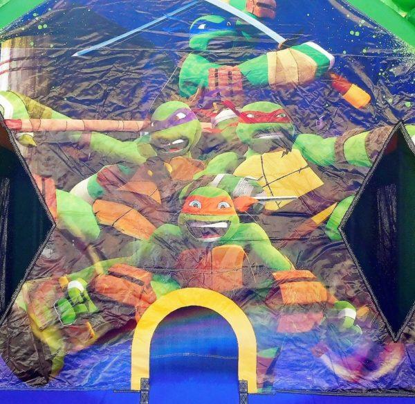 Ninja Turtles Jumper Closeup